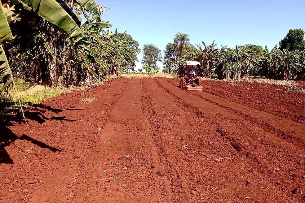 Apoio ao pequeno produtor é prioridade para a Prefeitura de Dourados, diz secretário